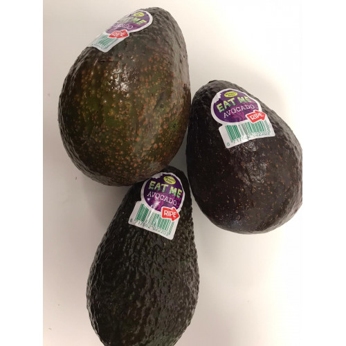 Avocado RTE, 1 pc.