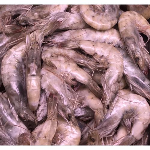 Large shrimps 21/30 frozen, 750g