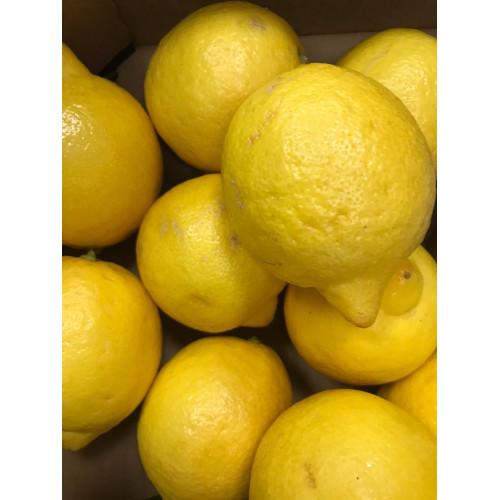 Lemon, 2pc.