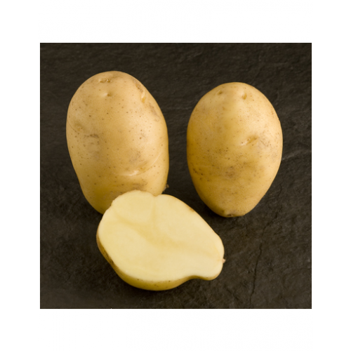 Картофель Nicola слабо-рассыпчатый, 3кг