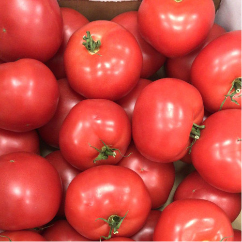 Pink tomatoes, 1kg