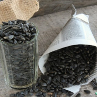 Dried and roasted sunflower seeds